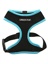Active Mesh Neon Blue Harness - Get fit, stay safe, stay seen. Treat your training buddy to an attractive new Active Mesh Harness with a dash of sporty neon to compliment your keep fit gear. But also great for regular walkies. High visibility Active Mesh Neon Harnesses provide the ultimate in comfort and safety, featuring a breath...